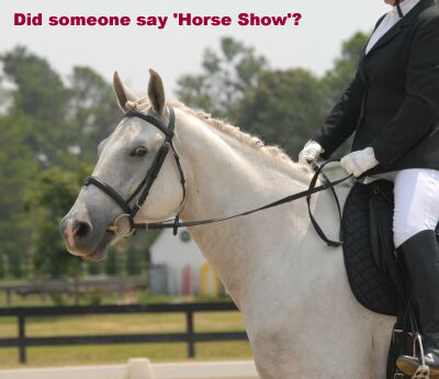 Did Someone Say Horse Show